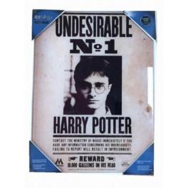 Poster Vidrio Harry Potter Indeseable Nº 1 30