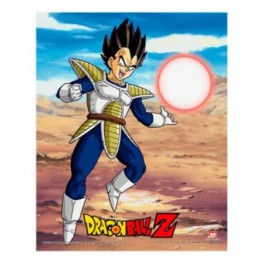 Cuadro 3D Dragon Ball Z Rivalry of Power